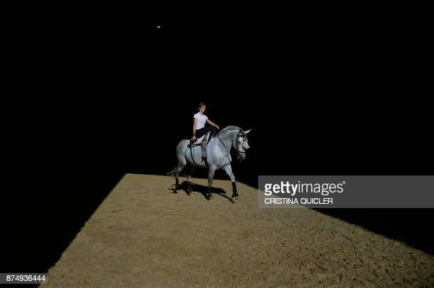 A rider trains her horse before an exhibition at the Sicab 2017 International Horse fair in Sevilla on November 16 2017 / AFP PHOTO / CRISTINA QUICLER