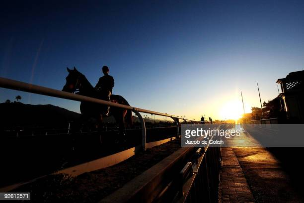 A rider warms up his horse during the morning workout in preperation for the Breeders Cup 2009 at the Santa Anita Racetrack on November 2 2009 in...