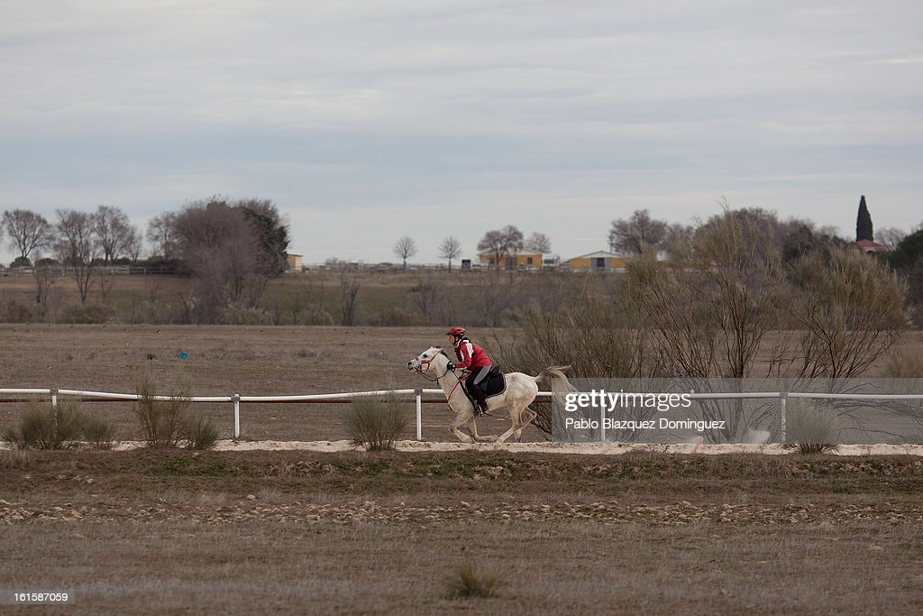 A riderr gallops thier horse across the site of the proposed 'Eurovegas' complex on February 10, 2013 in Alcorcon, near Madrid, Spain. Controversial plans have been given the go ahead for the Las Vegas Sands Corporation to build Europe's biggest casino and conference centre on the outskirts of Madrid bringing thousands of much needed jobs for the Spanish economy. As multi billionaire investor Sheldon Adelson's announced his plans protestors were claiming that the 36,000 room hotel complex would bring gambling addiction, criminal activity, prostitution and environmental damage to the area.