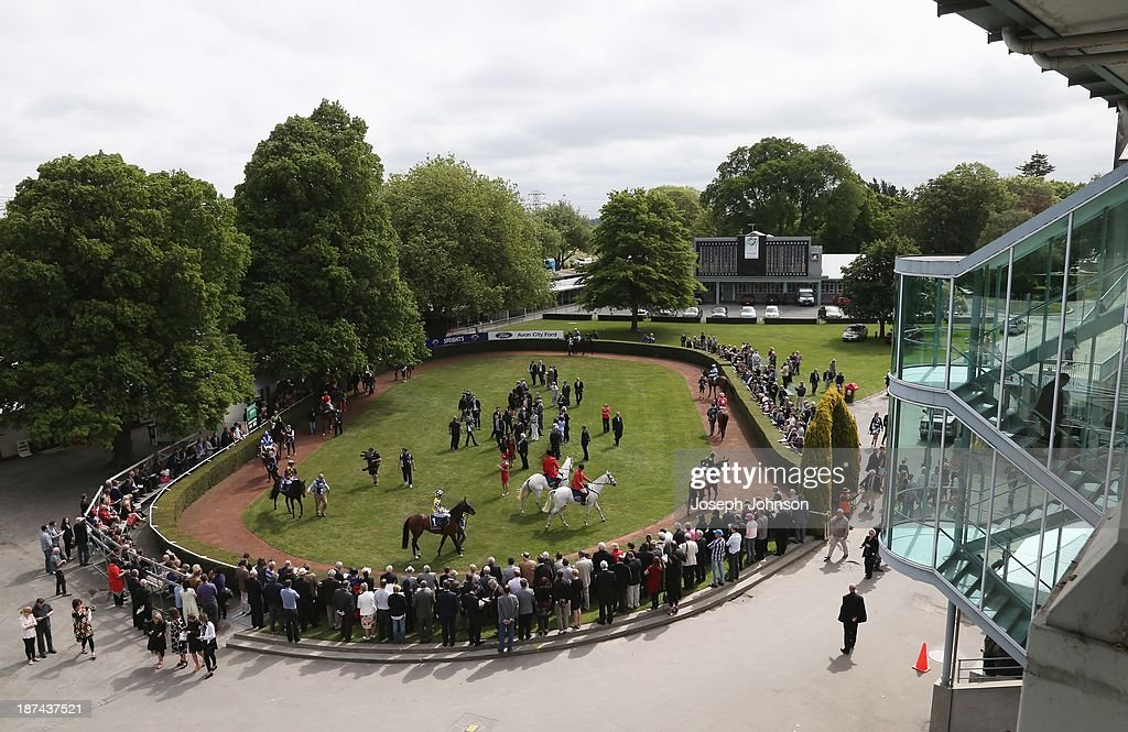 Riders and horses preapare in the birdcage before the Sothys 41st New Zealand 2000 Guineas race during New Zealand 2000 Guineas Day on November 9, 2013 in Christchurch, New Zealand.