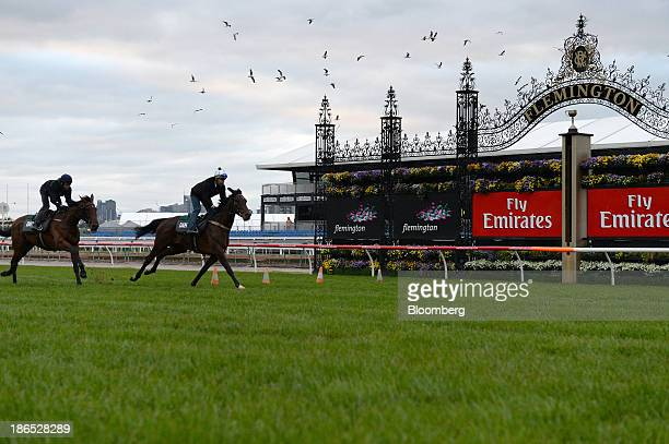 Riders and horses test the track during early morning trackwork at Flemington Racecourse venue for the Melbourne Cup thoroughbred horse race in...