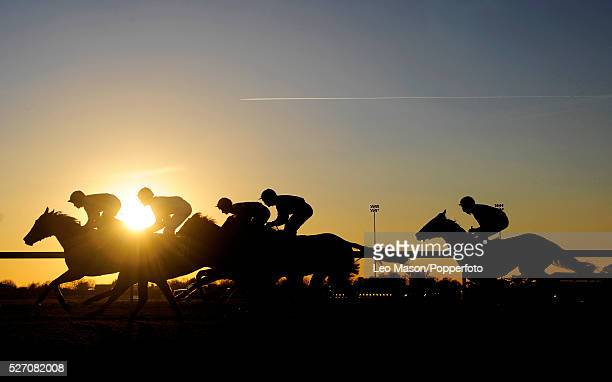 Riders and their horses seen against the setting afternoon sun riding down the track at Kempton Park in London England UK