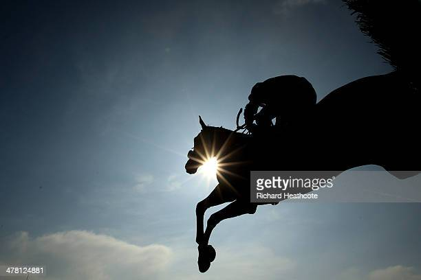 Riders clear a jump in The RSA Steeple Chase during Ladies Day at the Cheltenham Festival at Cheltenham Racecourse on March 12 2014 in Cheltenham...