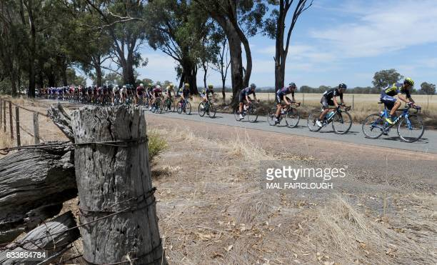 Riders compete in stage three of the 2017 Herald Sun Tour cycling race in Melbourne on February 4 2017 / AFP / Mal Fairclough / IMAGE RESTRICTED TO...