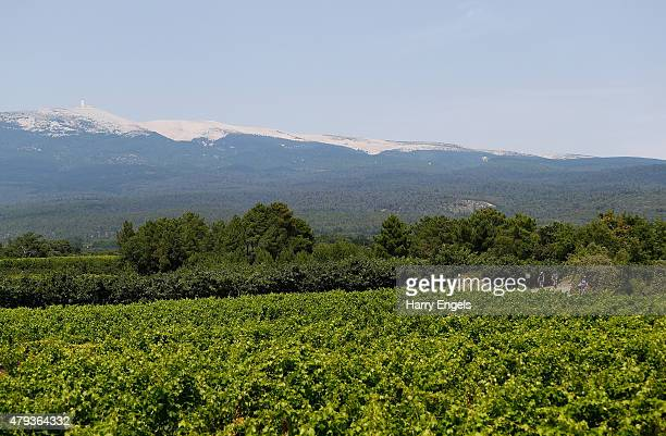 Riders descend through vineyards after climbing Mont Ventoux during the Laureus St James's Place Bike Ride from Provence to Mont Ventoux on July 3...
