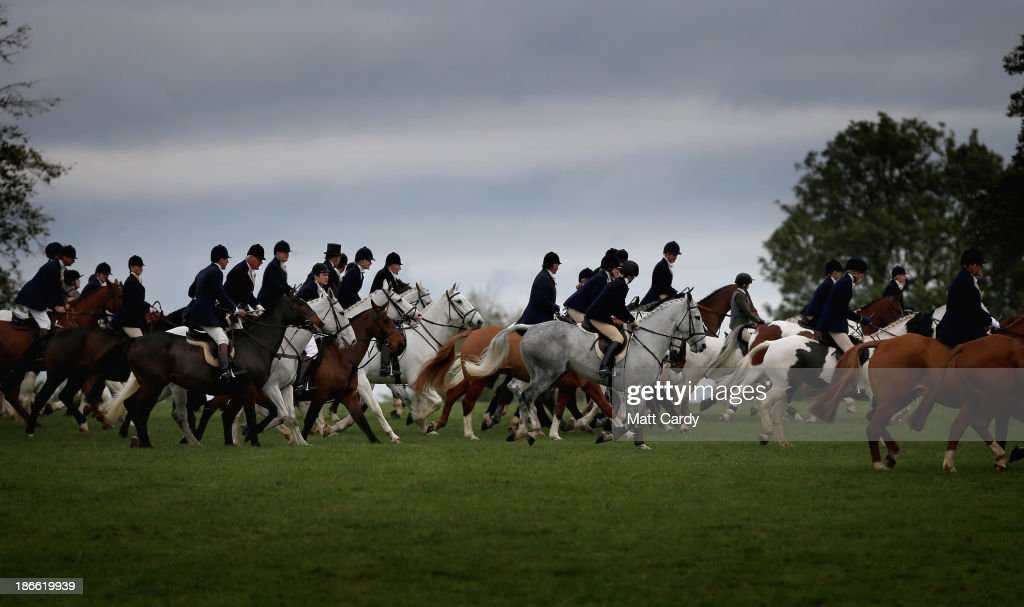 Riders from the Duke of Beaufort's Hunt follow the lead huntsmen at their opening meet of the season at Worcester Lodge on November 2, 2013 near Badminton in Gloucestershire, England. Traditionally the hunting season starts at the beginning of November and although a ban on fox hunting with dogs has been in force since February 2005, many supporters of fox hunting are continuing to call for a repeal of the ban, saying the current law is hard to interpret and enforce.