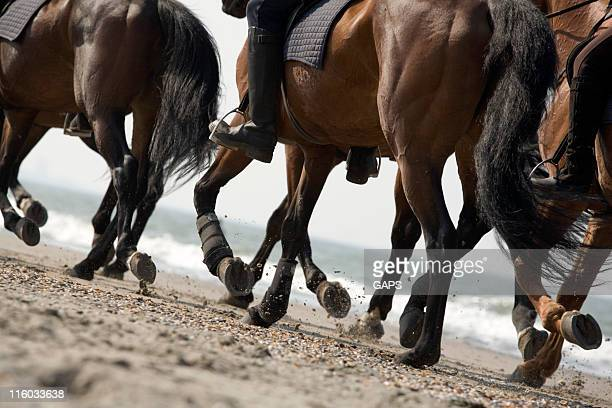 riders in action on the beach