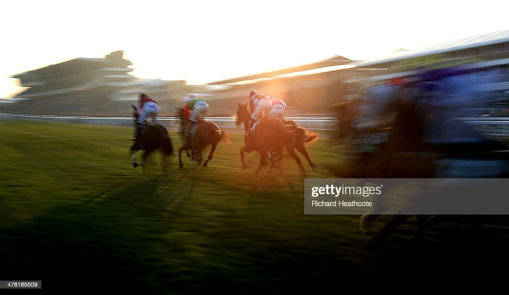Riders in The Weatherbys Champion Bumper race in the late afternoon sunlight during Ladies Day at the Cheltenham Festival at Cheltenham Racecourse on March 12, 2014 in Cheltenham, England.