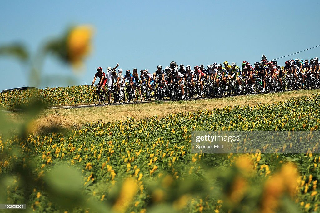 Riders pass a sunflower field on Stage 14 of the Tour de France, the first stage to enter the Pyrenees, on July 18, 2010 in Ax 3 Domaines, France. The 184.5km course from Revel features some of the toughest climbs so far in the race including the Port de Pailhères, which at 15.5 kilometers with an average gradient of 7.9% and higher may reveal who is strongest in the peloton. Luxembourg's Andy Schleck of team Saxo Bank continues to wear the yellow jersey, while Astana`s Alberto Contador of Spain is a close second. Christophe Riblon of France won the stage. The iconic bicycle race will include a total of 20 stages and will cover 3,642km before concluding in Paris on July 25.