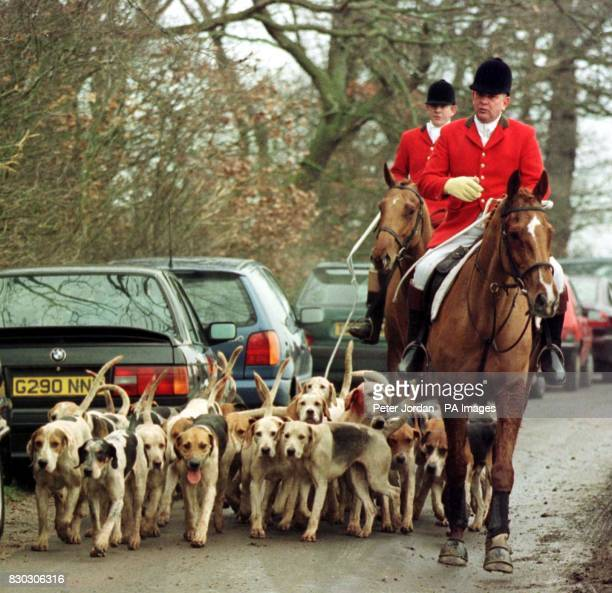 Riders with their hunting dogs set off at Maldon in Essex where nearly 1000 people gathered to watch one of the biggest hunts of the day There were...
