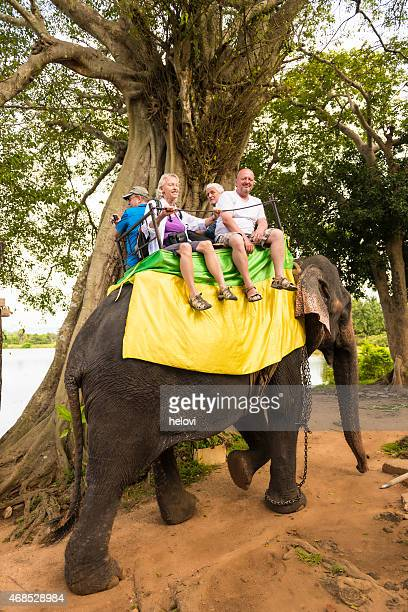 Riding elephants back in Asia