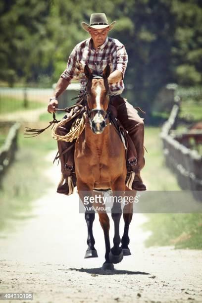 Équitation toute berzingue
