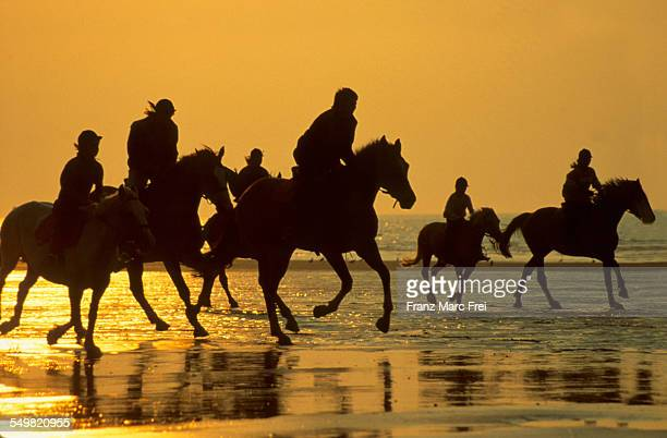Riding horses, Beach, Deauville
