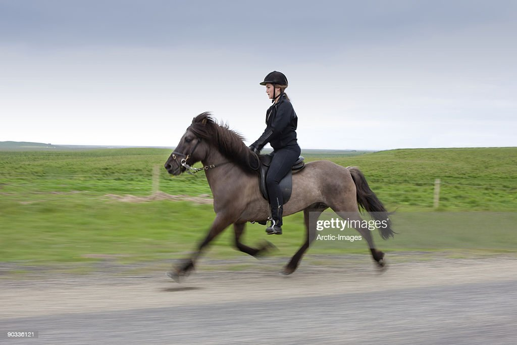 Riding Icelandic Horse : Stock Photo