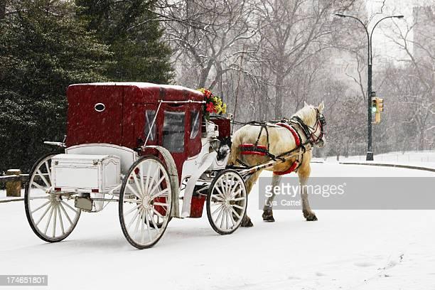 乗馬でニューヨークのセントラルパーク