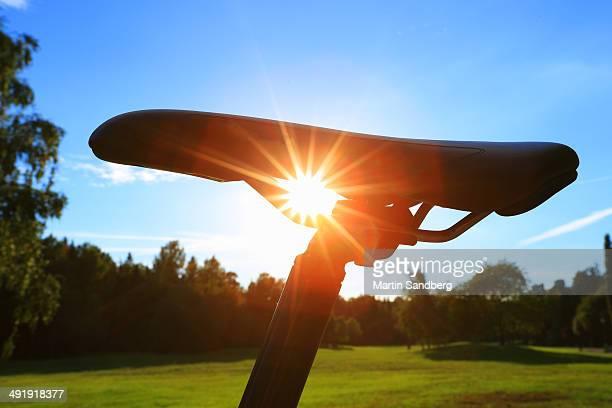 Riding the backlit saddle