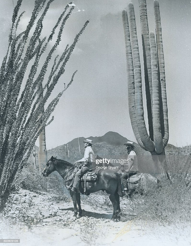 Riding the trails around Tucson leads one through fields of these giant Saguaro cacuts which might almost stand as the symbol of the southwest The...