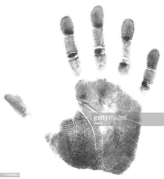 Mão direita (51 MP