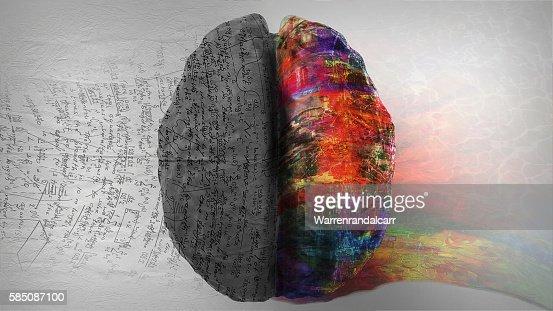 Derecha, izquierda del hemisferio cerebral : Foto de stock