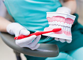 Woman dentist hygienist with gloves holding jaw model and teaching the right technique of cleaning teeth on a jaw model with red toothbrush in dentist office close-up photo. Showing how to clean the t