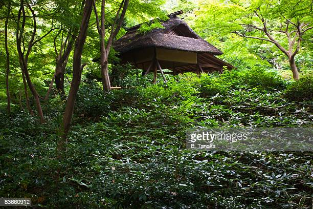 Rikugien Garden teahouse in Tokyo, Japan