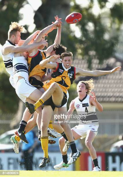 Riley Bowman of the Dandenong Stingrays contests the ball during the round 13 TAC Cup match between Dandenong and Northern Knights at Shepley Oval on...