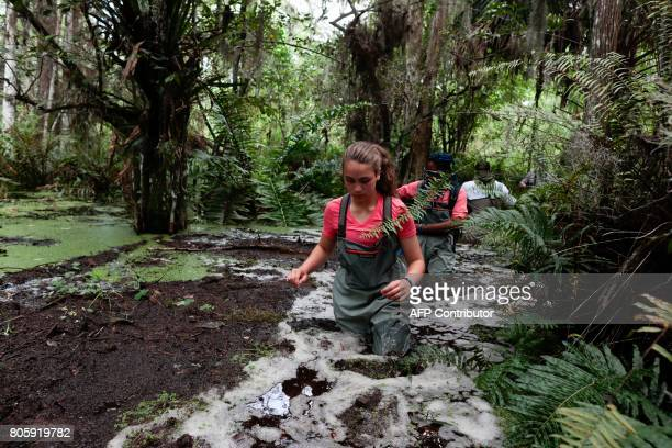 Riley Brooks walks in a swamp slog during a training with Soul River group at the Arthur R Marshall Loxahatchee National Wildlife Refugee in Boynton...