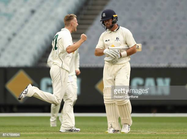 Riley Meredith of Tasmania celebrates taking the wicket of Daniel Christian of Victoria during day four of the Sheffield Shield match between...