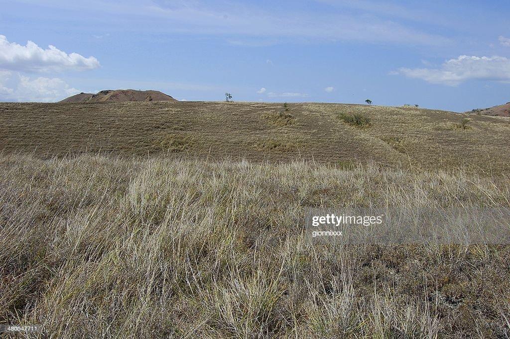 Isla de Rinca seco paisaje, Indonesia : Foto de stock
