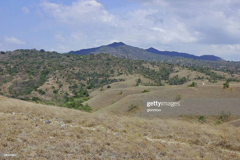 Rinca island dry landscape, Indonesia : Stock Photo