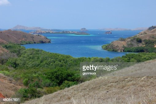 Paisagem de Rinca Ilha, Indonésia : Foto de stock