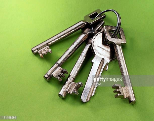 Anillo con llaves de la casa