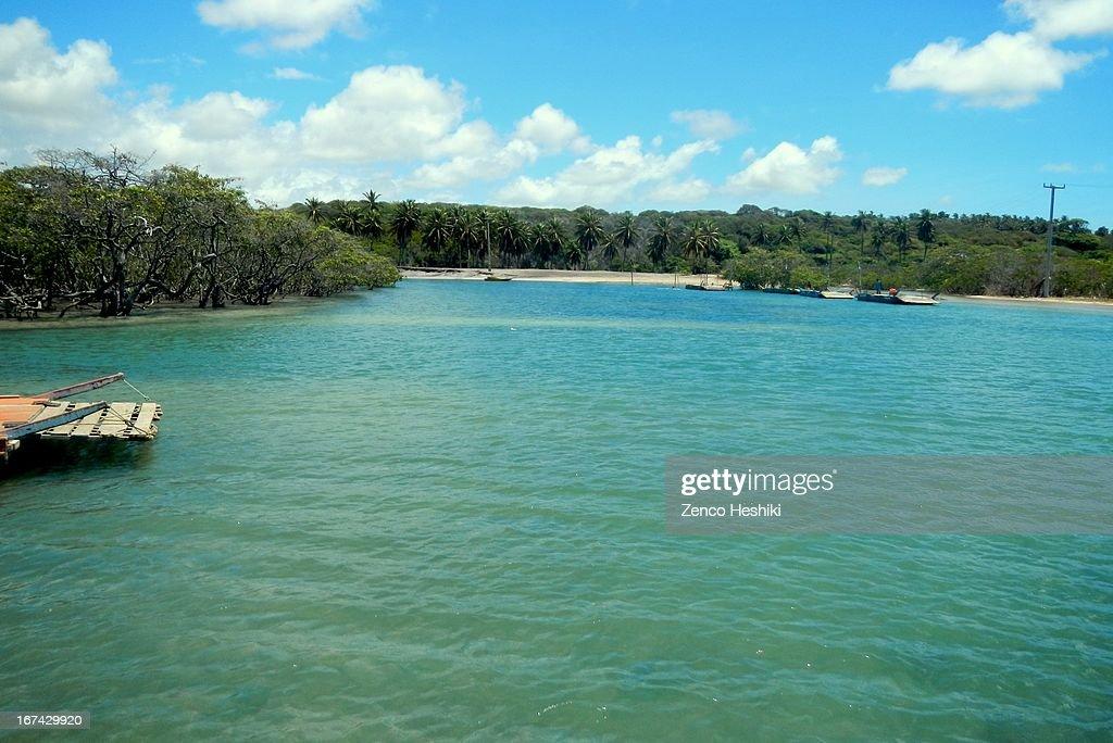 Rio Cunhau : Foto de stock