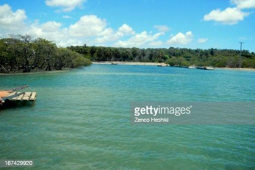 Rio Cunhau : Stock Photo