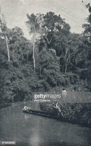 "Rio de S Anastacio' 1895 Santo Anastacio River is a river of S""o Paulo state in southeastern Brazil From Sao Paulo by Gustavo Koenigswald [S Paulo..."