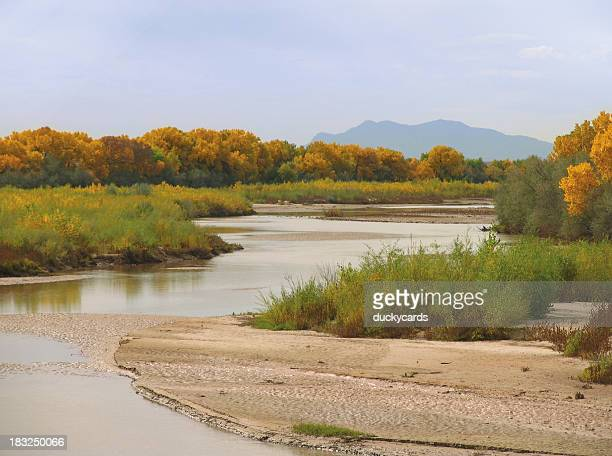 Rio Grande and Cottonwoods in Autumn