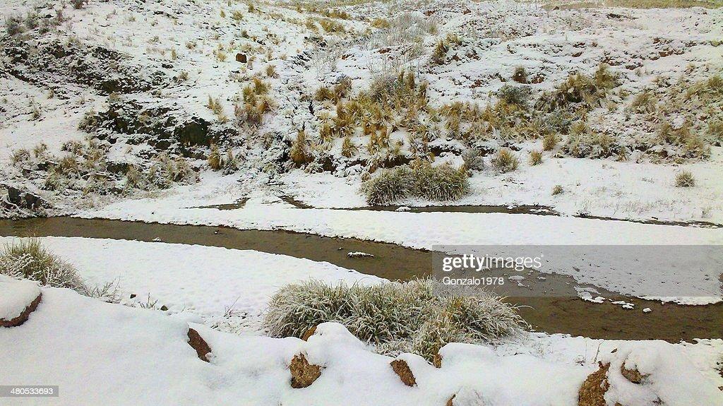 rio nevado : Foto stock