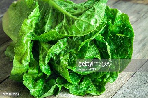 ripe organic green salad Romano closeup : Stock Photo