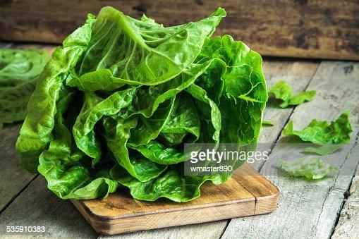 Maduro orgánicos ensalada verde Romano : Foto de stock