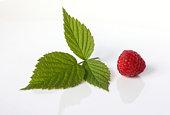 Ripe raspberries with raspberry leaf