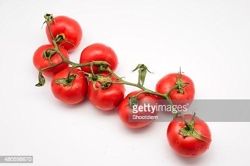 Ripe tomatoes on the vine isolated on white : Stock Photo