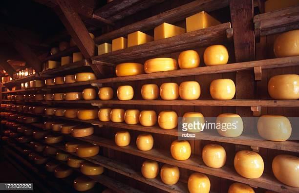 Riping Dutch cheeses