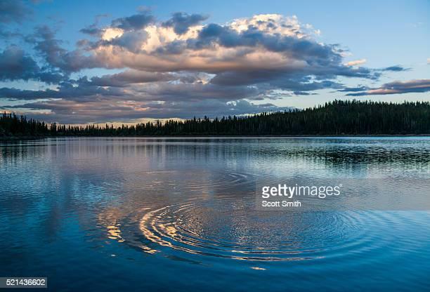 Ripples in Blind Lake. Boulder Mountain. Utah. USA.