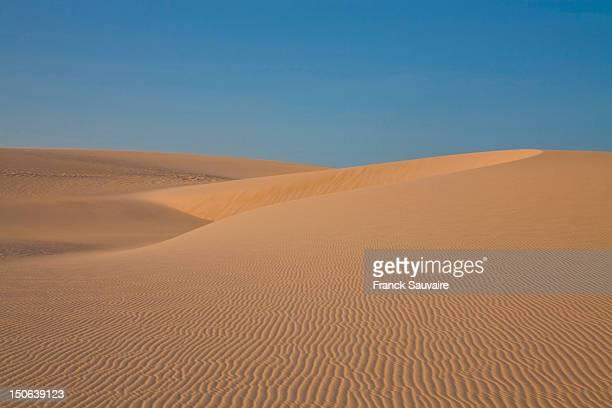 Ripples in sand dunes under blue sky