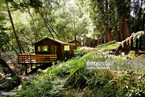 Big sur foto e immagini stock getty images for Big sur cabin