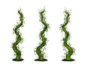 3D render of three rising twisted beanstalks.