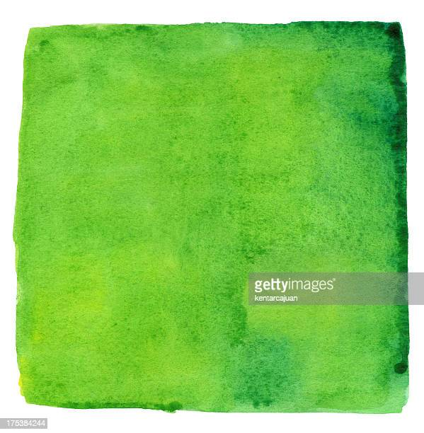Aumento de la selva Watercolour verde cuadrado