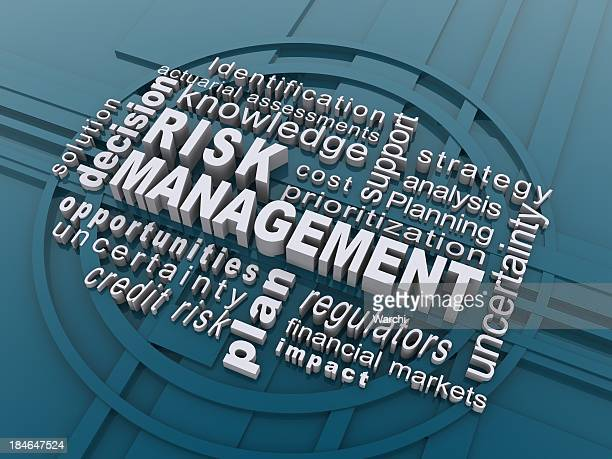Risikomanagement management