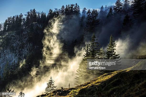 Ritzau Alm area, Zahmer Kaiser, Kufstein District, Tyrol, Austria