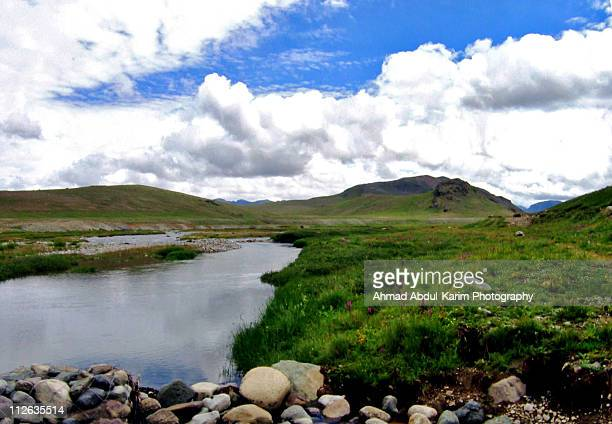 River and green fields at Deosai Plains in Pakista